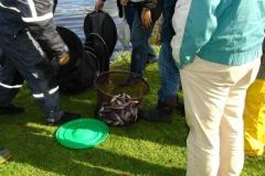 LUMC Hutspotwedstrijd afb.15